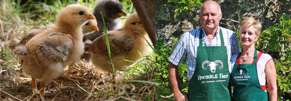Huxtable Farm owners Jackie and Antony have been busy working on the farm during lockdown.