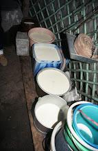 Photo: 03430 シリンホト近郊/ノルボ家/乳製品作り