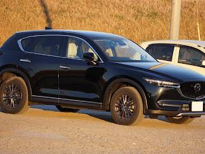 CX-5 KF系 2018年式XD L package 4WDのカスタム事例画像 らりくまさんの2019年01月04日14:06の投稿