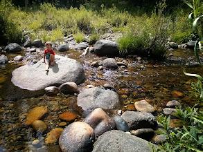 Photo: Finn On a Rock