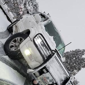 ハイラックスサーフ KZN185Wのカスタム事例画像 myjpさんの2020年02月12日17:47の投稿