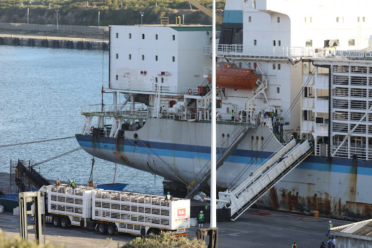 Al Shuwaikh crew loading 60, 000 sheep onto the vessel in October.