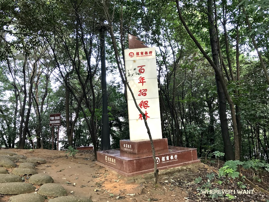 Changsha Itinerary | What to do in Changsha China | Hunan Province | Changsha in One Day | Where to go in Changsha China | One Day Itinerary
