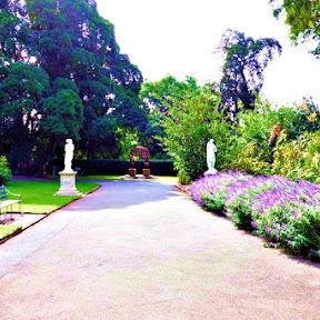 【世界の街角】 オーストラリア、「貴婦人」アデレードにある優雅な憩いの場「アデレード植物園(Adelaide Botanic Garden)」