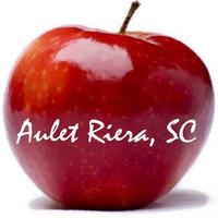 Logo Aulet Riera
