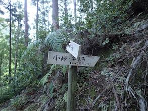 ここで右の小峠へ