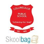 Collingullie Public School