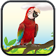 Real Talking Parrot (app)