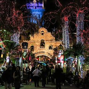 Mission Inn Lights by Tim Davies - Public Holidays Christmas ( riverside, lighting, mission, christmas, mission inn, light art,  )