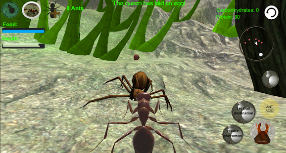 Ant Simulation 3D – Insect Survival Game 8