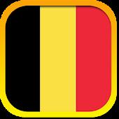 The Belgian Constitution