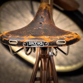 Brooks Seat by Eva Ryan - Transportation Bicycles ( worn, vintage, seat, antique, bicycle,  )