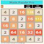 Math Puzzle Pro