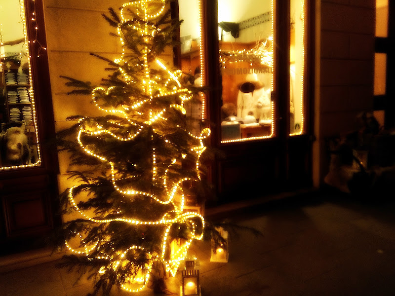 Natale a Trieste di Annalisa Mauro