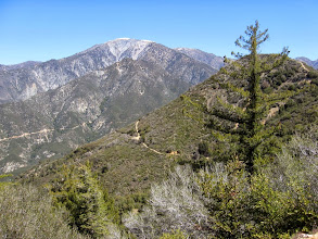 Photo: View northeast toward snow-capped Mt. Baldy with Lookout Mt directly in from of it. Sunset Peak is on the right. The Y junction (5140') on the western flank of Sunset is clearly seen in the middle. To the left goes to Cow Canyon Saddle. Up goes to Sunset Peak. And right is the route I climbed on2N07.