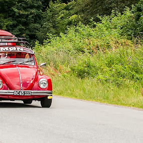 The Beetle by M. Andersen - Transportation Other (  )