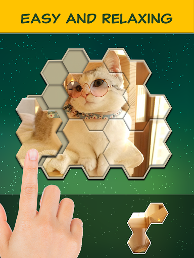Jigsaw Hexa Block screenshot 14