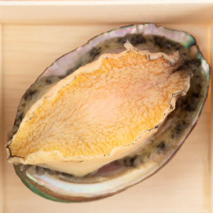 【鮮鮑魚 × 1 顆 / 每盒】鮑魚肉質厚實彈牙味又鮮,以海味提鮮往往少不了它。許多人會整顆鮑魚直接吃,但其實會建議先切片,較能細細品味鮑魚的口感。⚠️小提醒:一般料理請將鮑魚肉取下進行料理,其餘臟器丟棄,因大部分人較不喜歡臟器過於濃郁的味道。