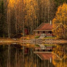 Samsjøen by Svein Christiansen - Landscapes Forests