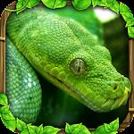 Snake Simulator Icon