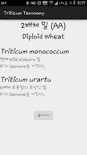 Triticum Taxonomy - náhled