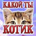Тест: Какой ты Котик - Шутка icon