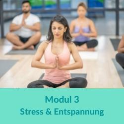 100 h Yogaübungsleiter Stressbewältigung
