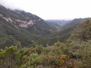 Photo: Depuis Can Damont la vallée encaissée du Riumajor
