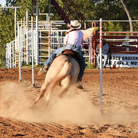 by Will McNamee - Sports & Fitness Rodeo/Bull Riding ( dld3us@aol.com, gigart@aol.com, aundiram@msn.com, danielmcnamee@comcast.net, mcnamee2169@yahoo.com, ronmead179@comcast.net,  )