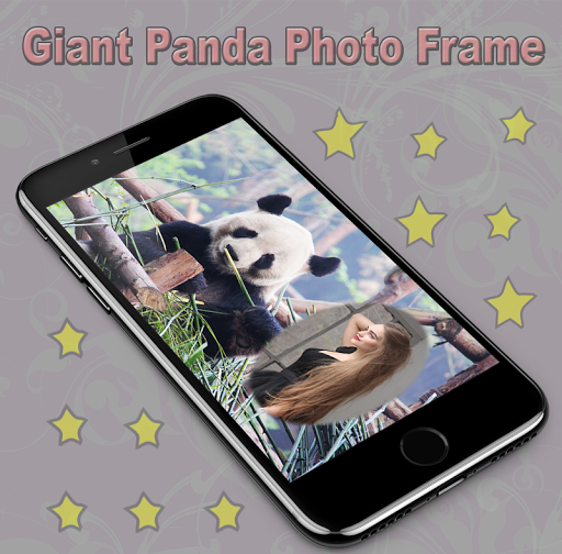 Giant Panda Photo Frame 1.1 screenshots 4