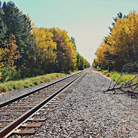 by Dawn Price - Uncategorized All Uncategorized ( fall, railroad track,  )