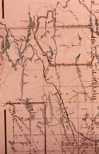 Photo: Ontario Lands and Forest map circa 1930