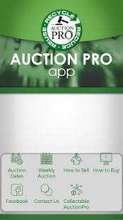 AuctionPro - náhled