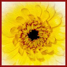 Flower by Dawn Hoehn Hagler - Digital Art Things ( digital art, yellow, oil paint, yellow flower, flower, photoshop )