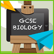 GCSE Revision Buddies