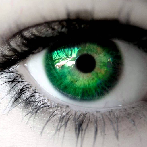 Ojos Verdes Biokinesis 遊戲 App LOGO-硬是要APP
