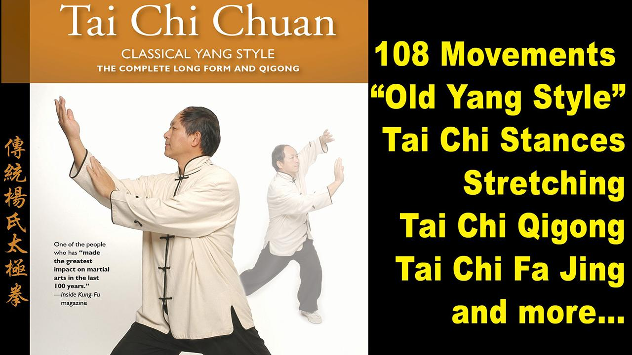 Tai Chi 108 Yang Form- screenshot