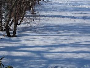 Photo: Hó és árnyék