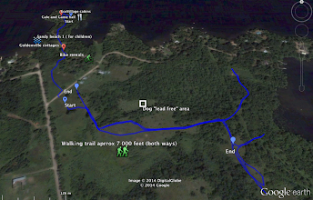 Photo: Goldenville Walking trail GPS tracking. South view.