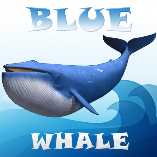 Blue Whale Simulator Mind Game
