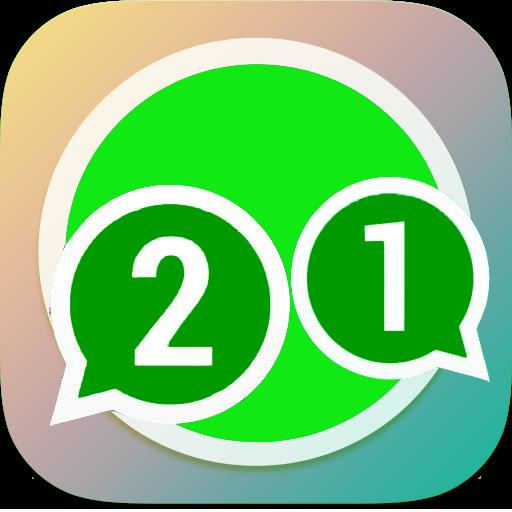 2 whatsapp accaunts guide
