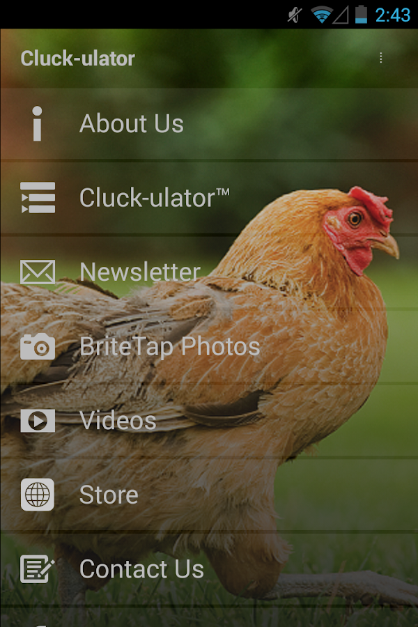 Cluck-ulator- screenshot