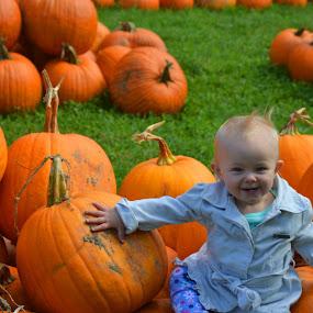The Pumpkin Munchkin by Tricia Ellis - Babies & Children Child Portraits (  )