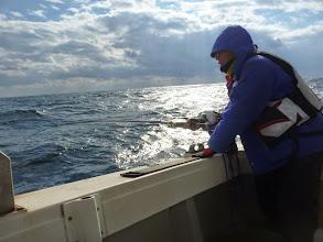 Photo: 「巻けーっ!全速で!サメに獲られるぞー!」