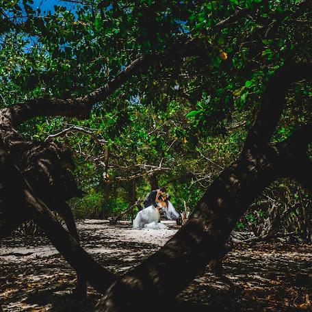 Fotógrafo de bodas Jesús Paredes (paredesjesus). Foto del 21.03.2018