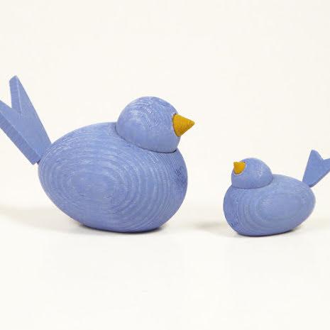 Fåglar ljusblå