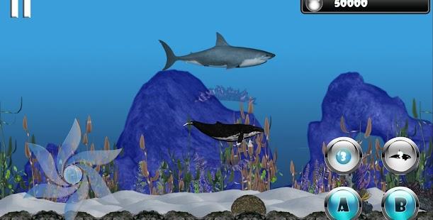 igri-priklyucheniya-delfina