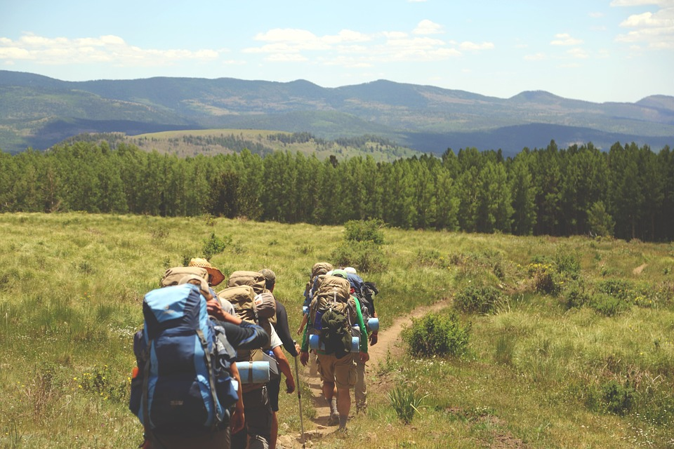 Hiking, Hikers, Backpacks, Backpacking, Grass