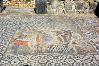 Photo: Better mosaics than Pompeii
