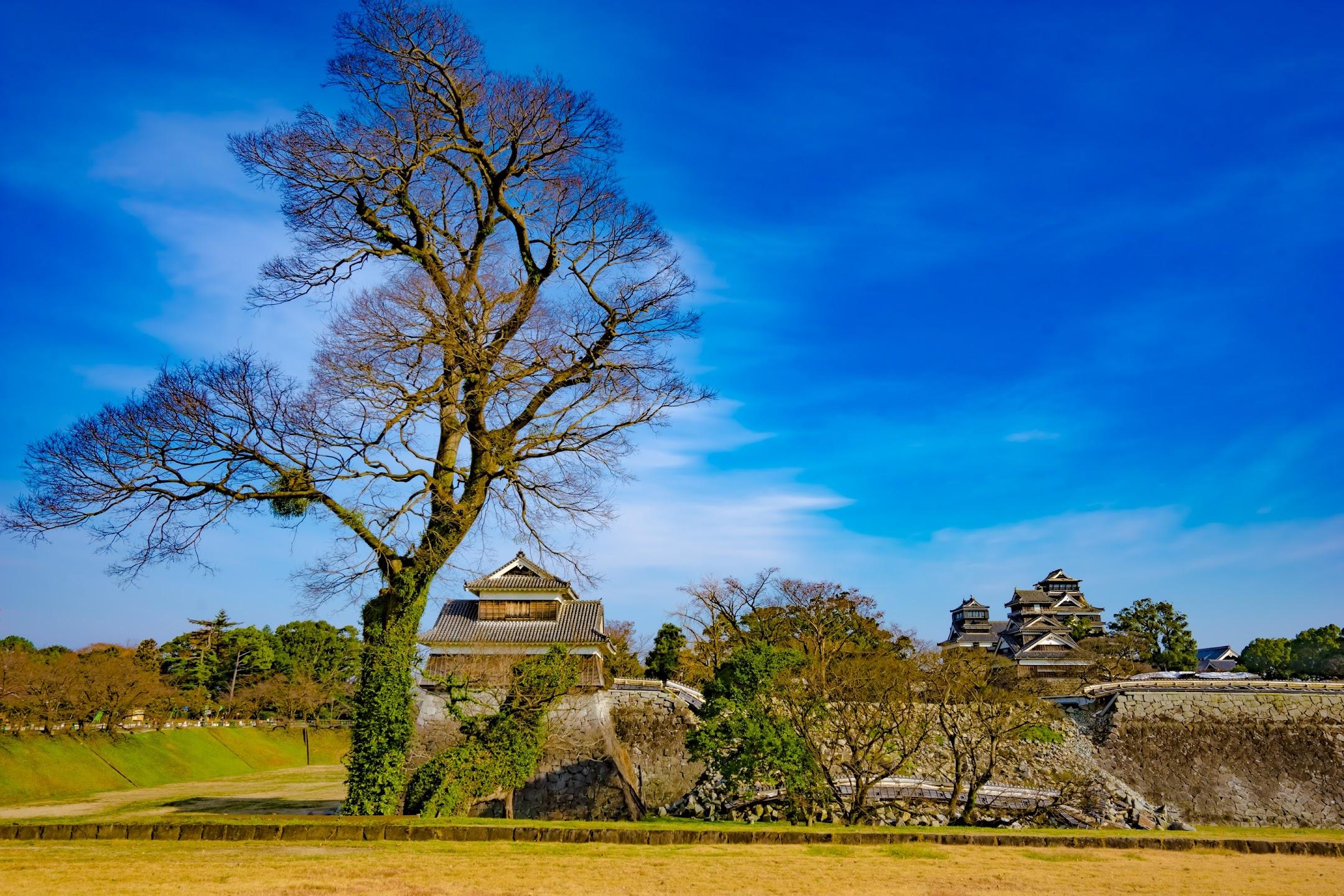 熊本城 二の丸広場 戌亥櫓2